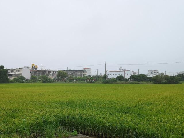 下茄苳優質農地,台南市後壁區下茄苳