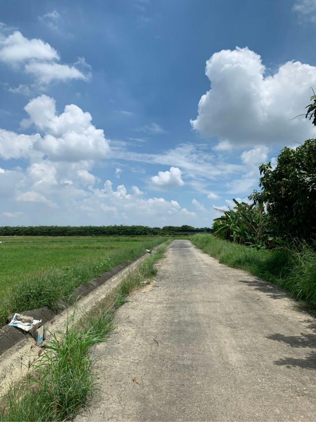 安溪寮農地,台南市後壁區福安里