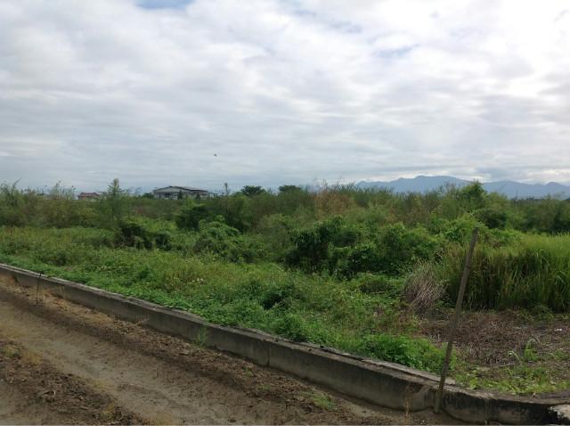 下營中央公路農地,台南市下營區台19甲省道