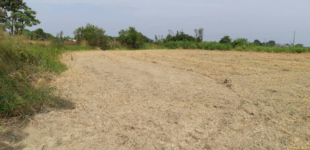 塭子內都計外的一般農業區,台南市佳里區成功路